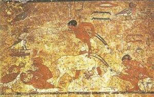 Кормление антилоп. Роспись в гробнице