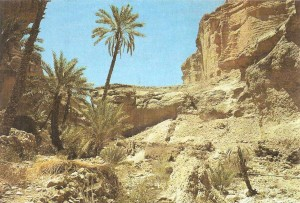 Палеолитическая стоянка Аль-Гуза Аравия