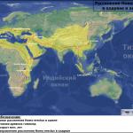 Карта расселения Homo erectus в олдувае и ашеле