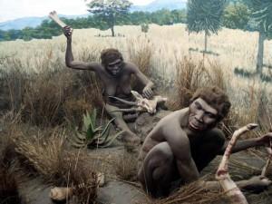 Человек прямоходящий, реконструкция. Кенийский национальный музей, Найроби, Кения.