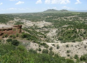 Вид на Олдувайское ущелье