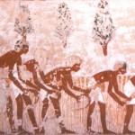 Фреска, показывающая сбор урожая, из гробницы Менена. 17 династия Египет