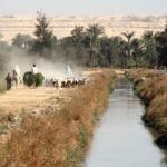 Каналы в Фаюмском оазисе