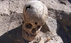 Череп молодой женщины найденной в одной из гробниц Тенахаха
