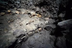 Остатки стены из черепов.