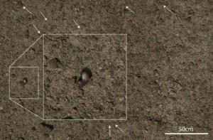 Археологический снимок
