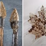 Стрелы и лист