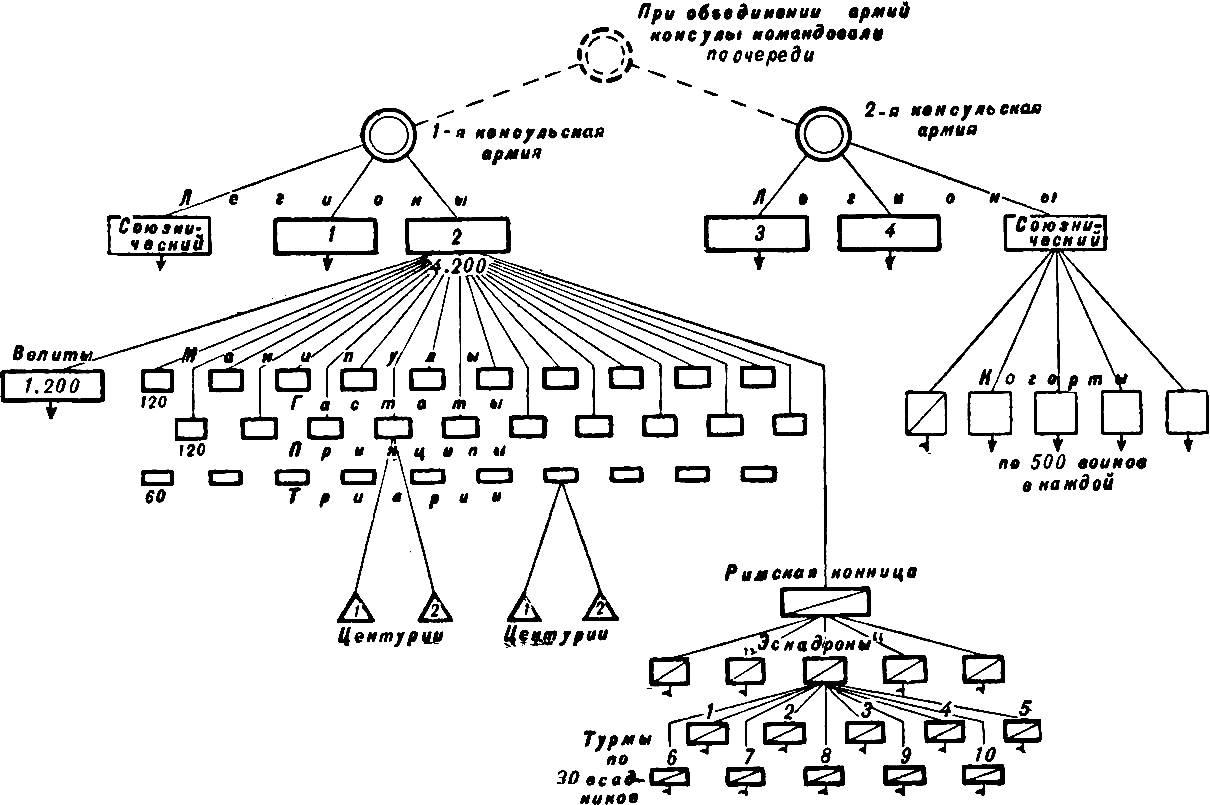 Устройство римской армии после пунических войн схема