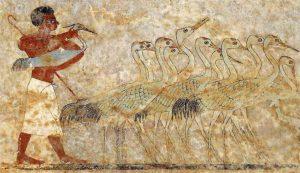 Росписи стен гробниц XII династии. Гробница Хнумхотепа II. Ловля птиц.